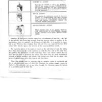 payne_booklets_0104d.jpg