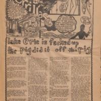 Newspaper_013_001 copy.jpg