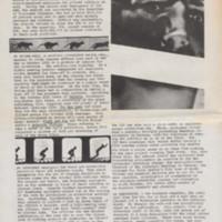Newspaper_05_002 copy.jpg