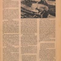 Newspaper_07_006 copy.jpg